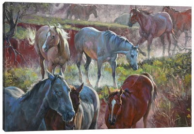 Greener Pastures Canvas Art Print