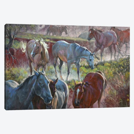 Greener Pastures Canvas Print #JSO14} by Jack Sorenson Canvas Wall Art