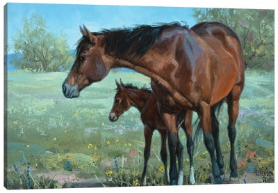 Watchful Eye Canvas Art Print