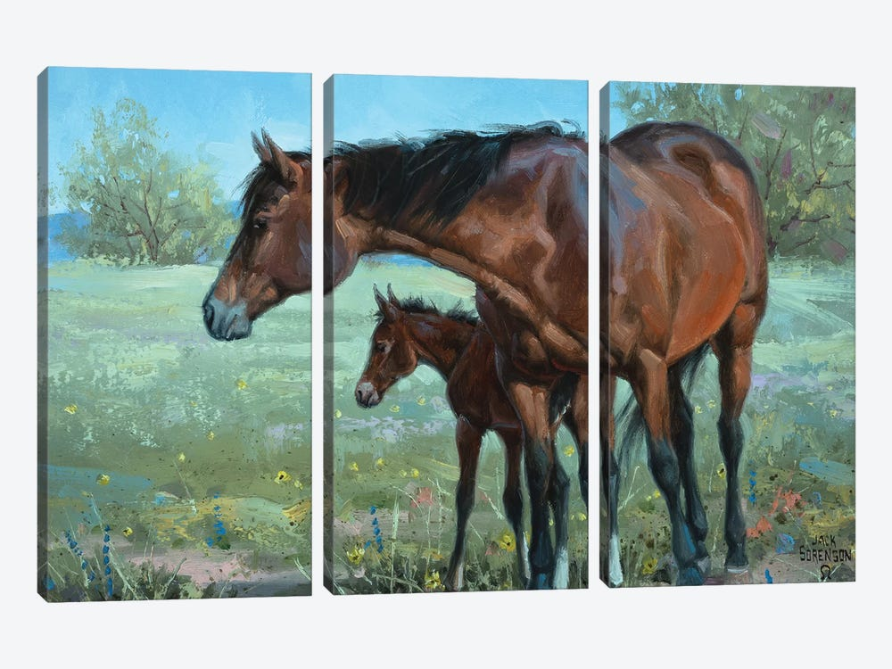 Watchful Eye by Jack Sorenson 3-piece Canvas Wall Art