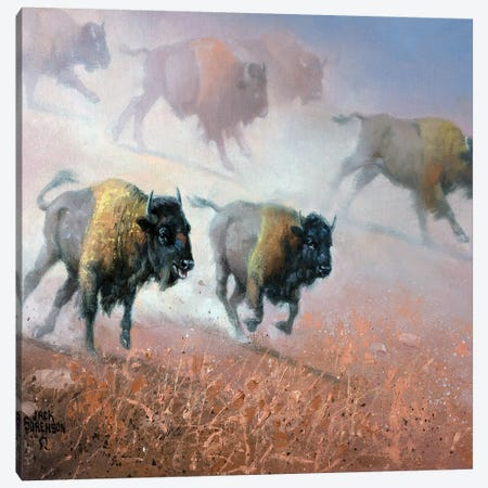Plains Thunder Canvas Print #JSO27} by Jack Sorenson Canvas Art Print