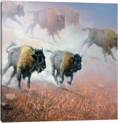 Plains Thunder Canvas Art Print