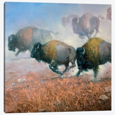Prairie Thunder Canvas Print #JSO28} by Jack Sorenson Canvas Artwork