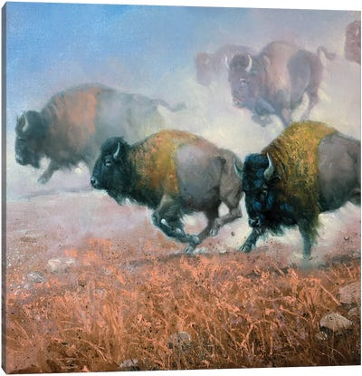 Prairie Thunder Canvas Art Print