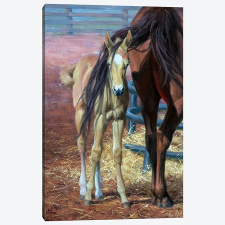 Bad Hair Day Canvas Print #JSO2} by Jack Sorenson Canvas Art Print