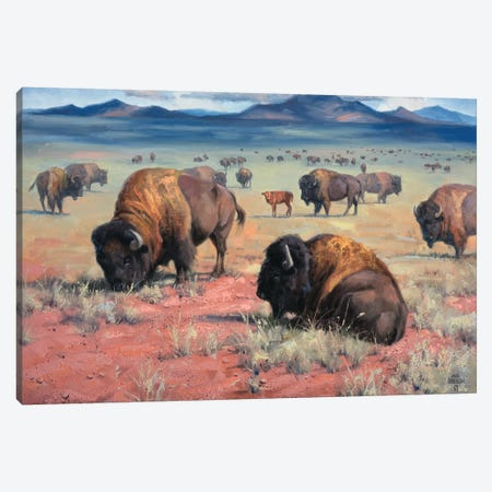Home On The Range 3-Piece Canvas #JSO3} by Jack Sorenson Canvas Print