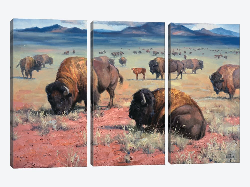 Home On The Range by Jack Sorenson 3-piece Canvas Print