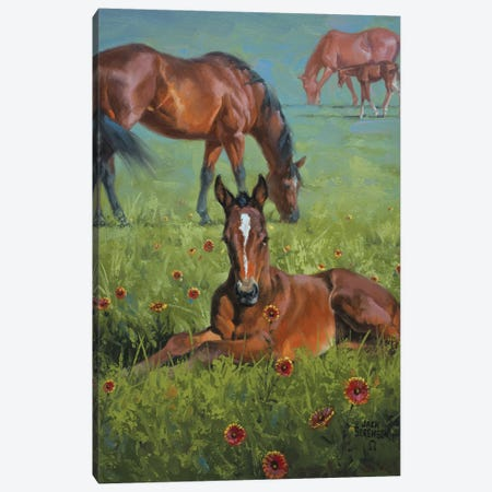 Indian Blanket 3-Piece Canvas #JSO4} by Jack Sorenson Canvas Wall Art