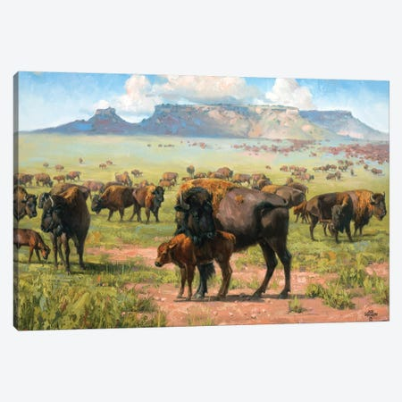Spirit Of The Plains 3-Piece Canvas #JSO9} by Jack Sorenson Art Print