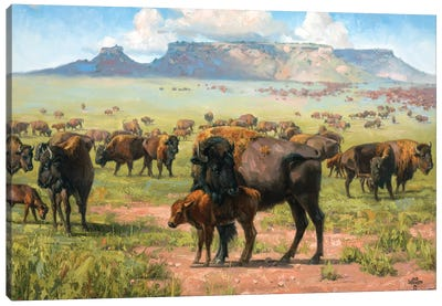 Spirit Of The Plains Canvas Art Print