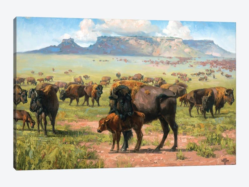 Spirit Of The Plains by Jack Sorenson 1-piece Canvas Art Print