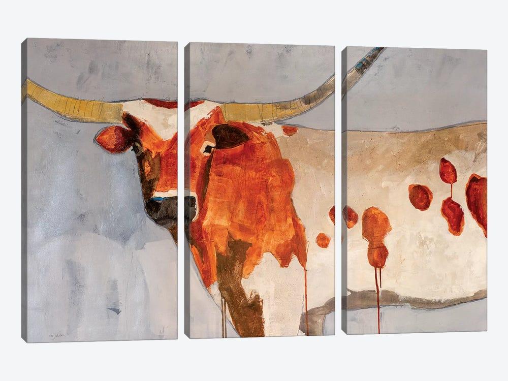 Longhorn Short Temper by Julian Spencer 3-piece Canvas Art Print