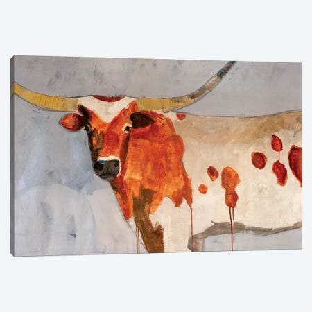 Longhorn Short Temper Canvas Print #JSR128} by Julian Spencer Canvas Art