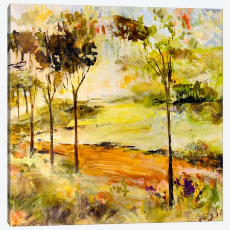 Scenic Path Canvas Print #JSR12} by Julian Spencer Canvas Artwork