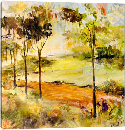 Scenic Path Canvas Print #JSR12