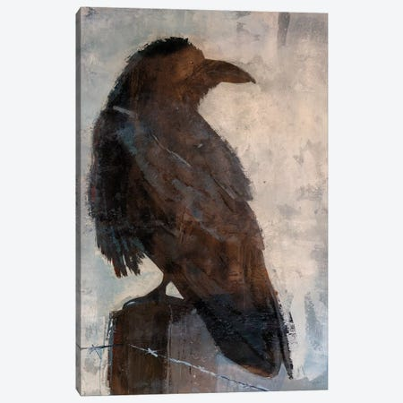 Raven Canvas Print #JSR133} by Julian Spencer Canvas Print