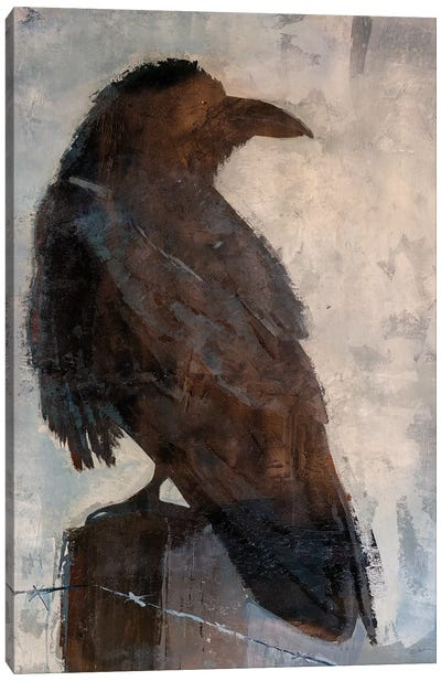 Raven Canvas Art Print