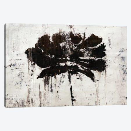 Black Rain Canvas Print #JSR134} by Julian Spencer Canvas Wall Art