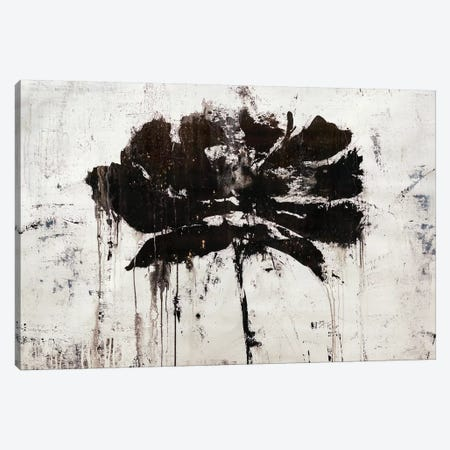 Black Rain Canvas Print #JSR134} by Julian Spencer Canvas Wall Art