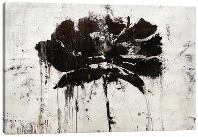 Black Rain Canvas Art Print