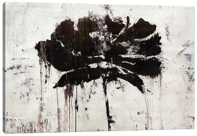Black Rain Canvas Art Print