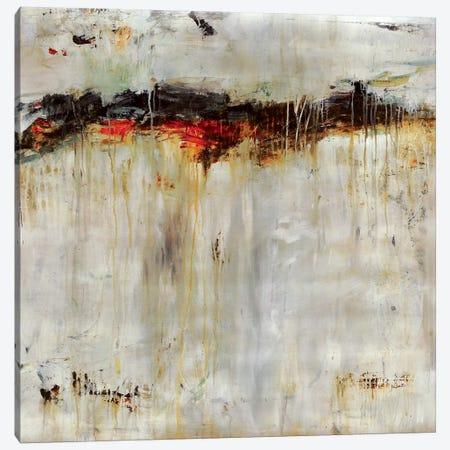 Ancient Falls Canvas Print #JSR140} by Julian Spencer Canvas Artwork