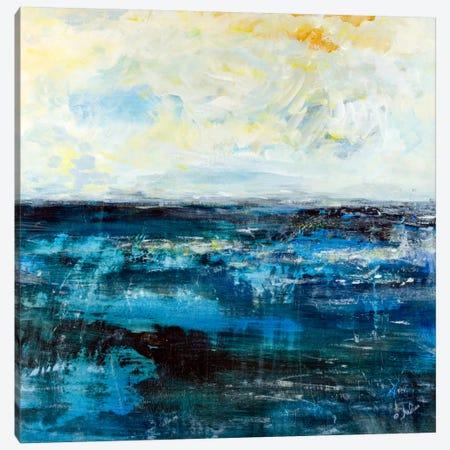 Skylight Canvas Print #JSR14} by Julian Spencer Canvas Print