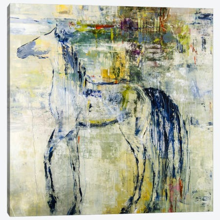 British Pony Canvas Print #JSR17} by Julian Spencer Canvas Art Print