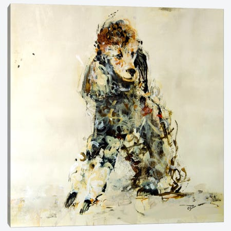 Coco Canvas Print #JSR1} by Julian Spencer Art Print