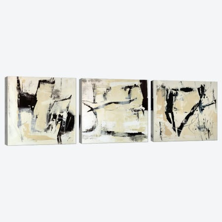 Pieces Triptych Canvas Print #JSR3HSET001} by Julian Spencer Art Print