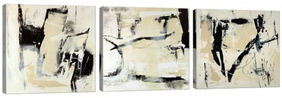 Pieces Triptych Canvas Art Print