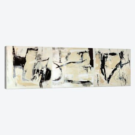 Pieces Triptych Canvas Print Set #JSR3HSET001} by Julian Spencer Art Print