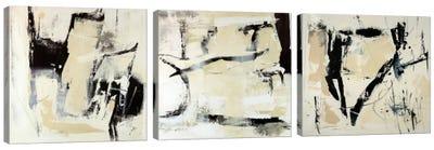 Pieces Triptych Canvas Art Print