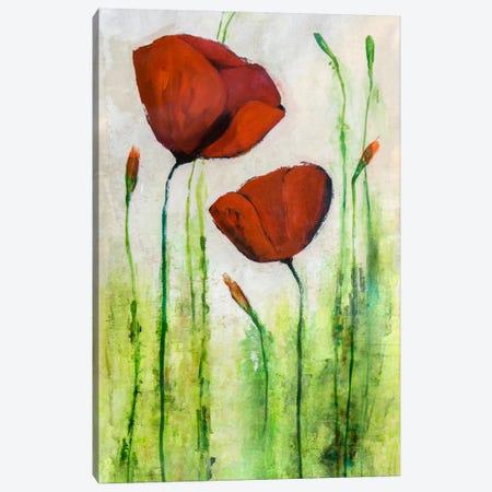 Spring Pop III Canvas Print #JSR43} by Julian Spencer Canvas Print