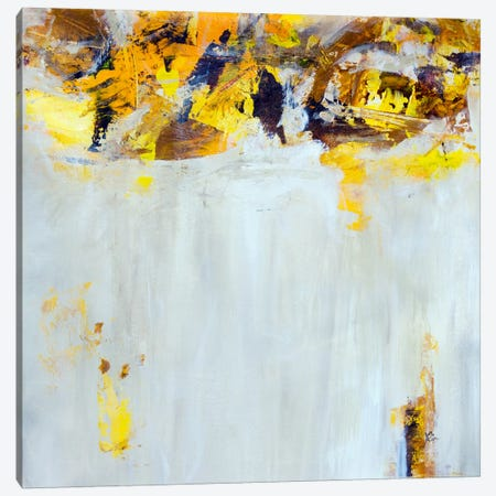 Yellow Spice Canvas Print #JSR48} by Julian Spencer Art Print