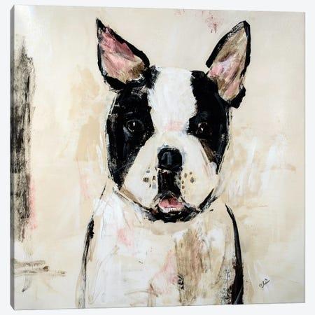 Jasmine Canvas Print #JSR4} by Julian Spencer Canvas Artwork