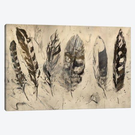 Quill Canvas Print #JSR58} by Julian Spencer Canvas Wall Art
