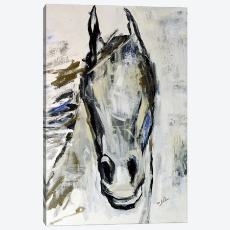 Picasso's Horse I Canvas Print #JSR6} by Julian Spencer Canvas Artwork
