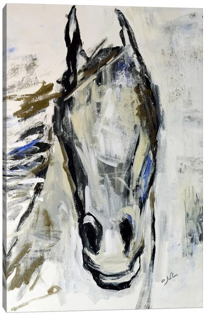 Picasso's Horse I Canvas Art Print