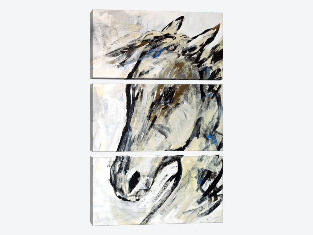 Picasso's Horse II by Julian Spencer 3-piece Canvas Artwork