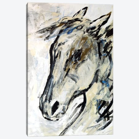 Picasso's Horse II Canvas Print #JSR7} by Julian Spencer Canvas Art