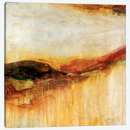 Canyon Sunset Canvas Print #JSR80} by Julian Spencer Canvas Art Print