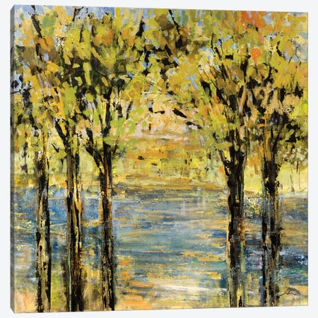 Lakeside Delight Canvas Print #JSR83} by Julian Spencer Art Print