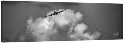 Soaring Canvas Art Print