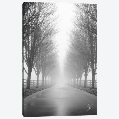 Curious Road Canvas Print #JSV4} by Justin Spivey Canvas Wall Art