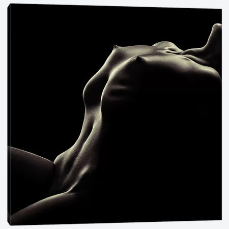Nude Woman Bodyscape 42 Canvas Print #JSW102} by Johan Swanepoel Canvas Wall Art
