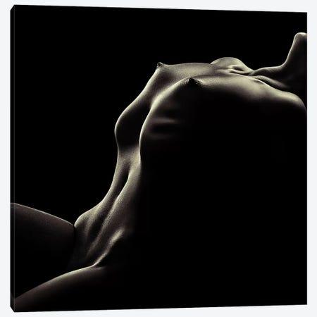 Nude Woman Bodyscape 42 Canvas Print #JSW102} by Johan Swanepoel Canvas Wall Art