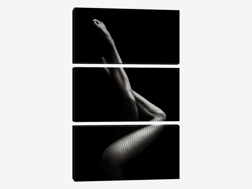 Legs In Fishnet Stockings I by Johan Swanepoel 3-piece Canvas Print