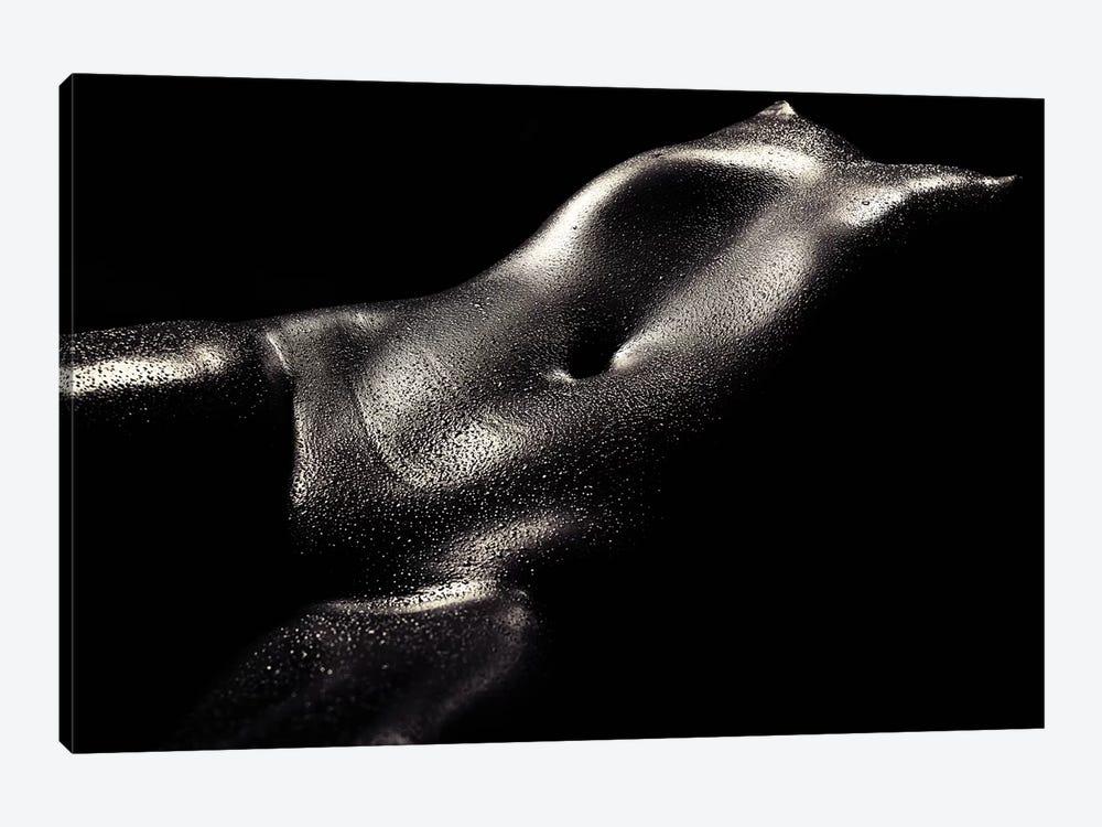 Woman Wet Bodyscape II by Johan Swanepoel 1-piece Canvas Print