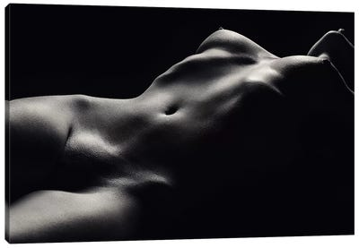 Nude Woman Bodyscape 47 Canvas Art Print